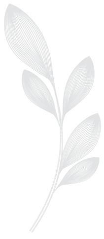 DFCL - Flower Motif