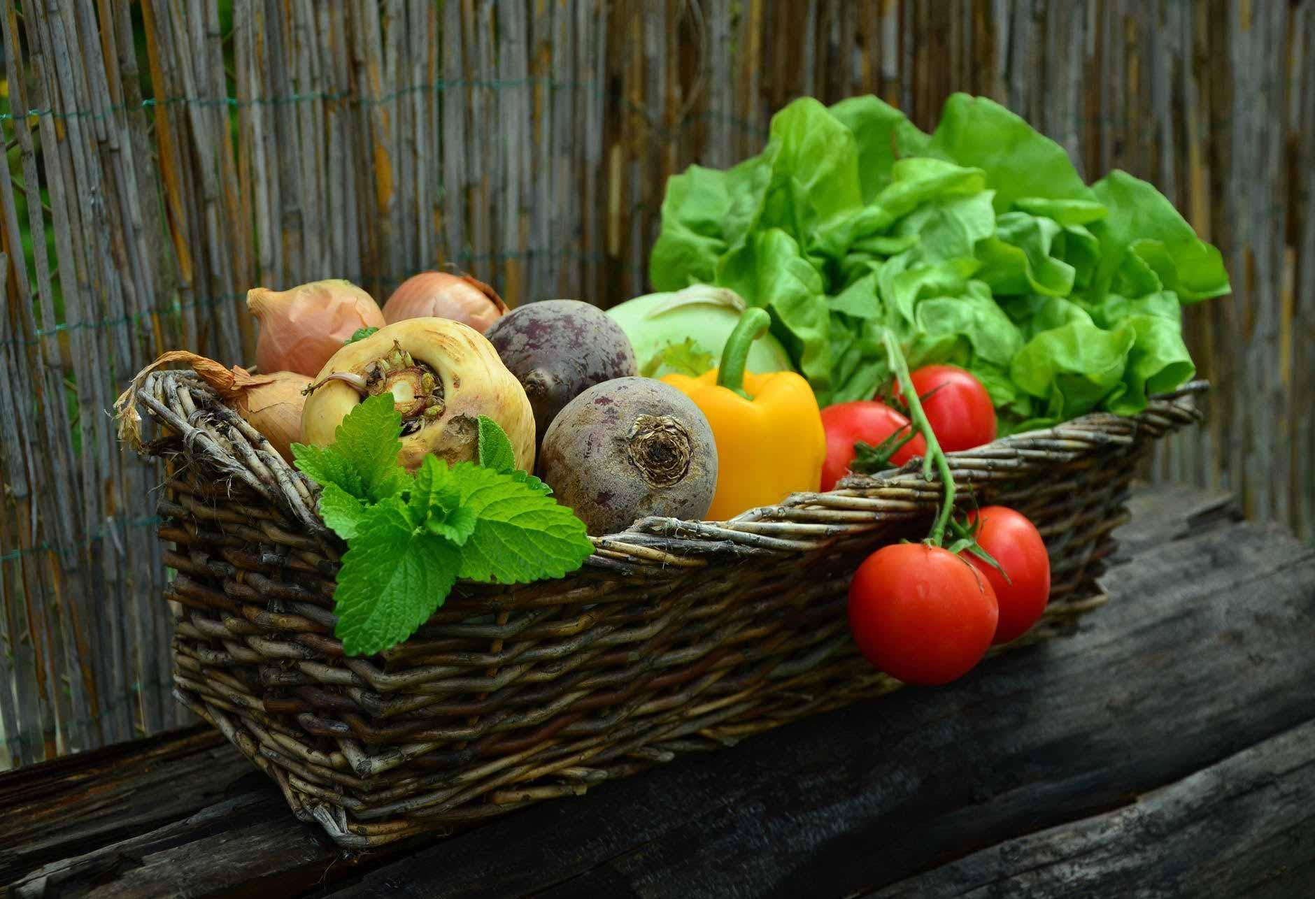 Design for Conscious Living - Edible Garden Design in Toronto - Basket of Edibles - Pixabay on Pexels