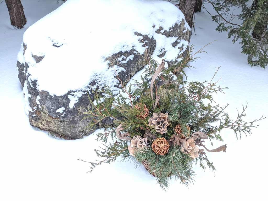 DFCL - Handmade Seasonal Décor - Celia Resurfaces a Planter with Grapevines - FLORAL ARRANGEMENT CREATED BY CELIA ALIDA RUTTE