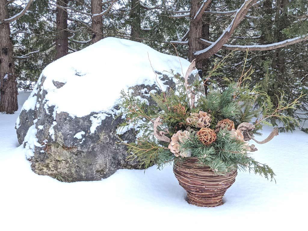 DFCL - Handmade Seasonal Décor - Celia Resurfaces a Planter with Grapevines - GRAPEVINE PLANTER AND FLORAL ARRANGEMENT