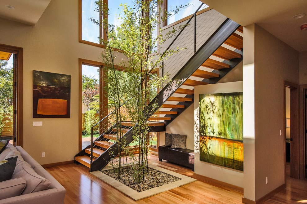 Design for Conscious Living - Indoor Plant Revival - Top Six Indoor Plant Care Tips - Evolving Design Trend - Photo Taken by Dennis Mayer of Tree Inside Stairwell of Home