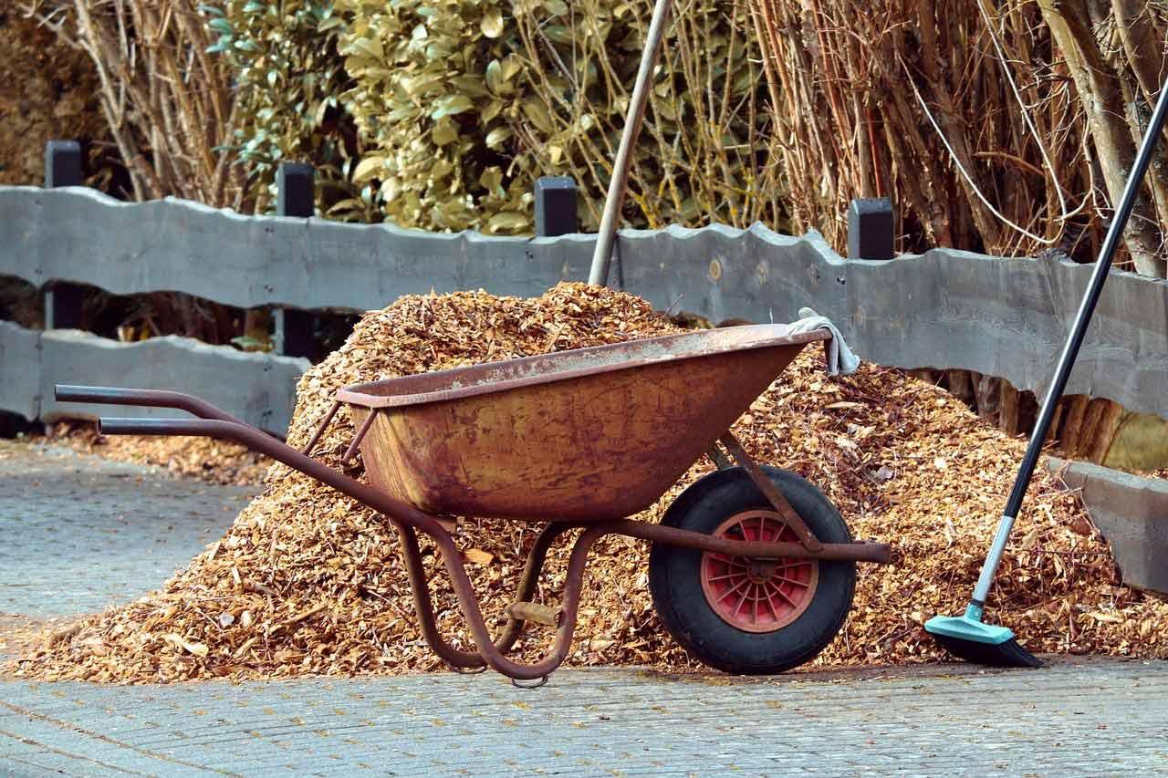 A wheel barrel beside a pile of light brown cedar mulch.