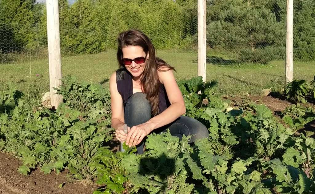 Celia Alida Rutte spraying down kale in the garden with a spray solution for cabbage worm.